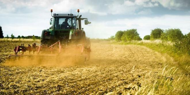 Politica agricola, Procaccini (fdi): La commissione UE ci ascolti