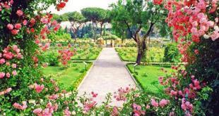 roseto-comunale-roma