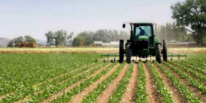 Agricoltura: approvata la legge sui biodistretti