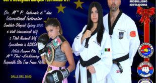 Taekwondo Wtf Technical Seminar