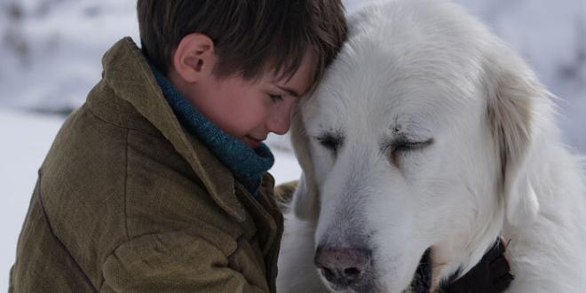 """Straordinaria apertura per """"Belle & Sebastien – Amici per sempre"""": al cinema dal 22 febbraio"""
