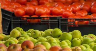 pomodori-e-mele