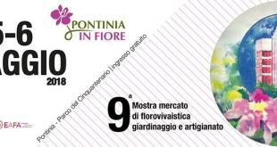 pontinia-in-fiore