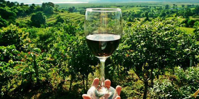 Nettuno Wine Festival a Roma per lo sviluppo urbano sostenibile