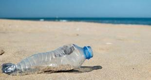 Dune Plastic Free