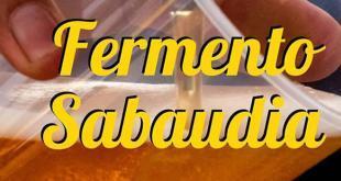 fermento-sabaudia-2019